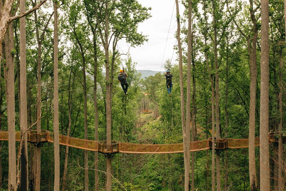 aerial view of two people on anakeesta dual ziplines